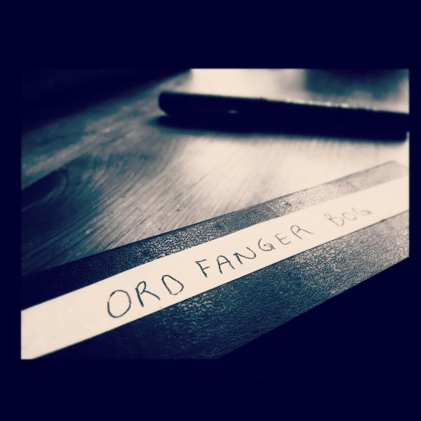 Min notesbog til at samle ord med